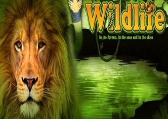 Play wildlife slot game for free